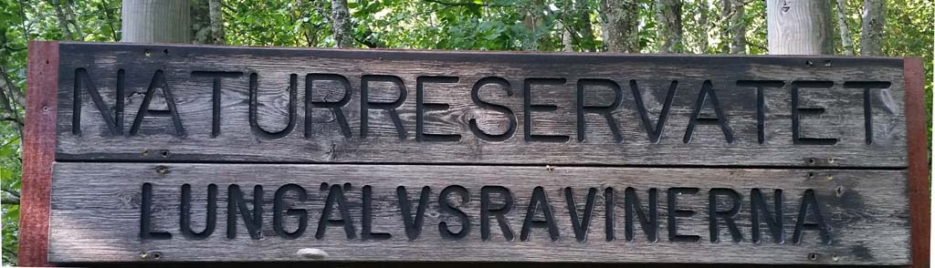 Vandra på Brattforsheden naturreservat