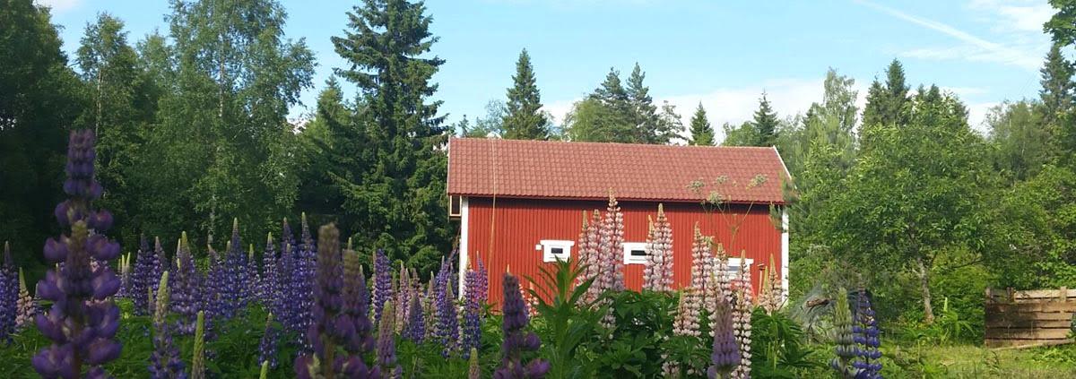 Vakantiehuis boeken Zweden Varmland