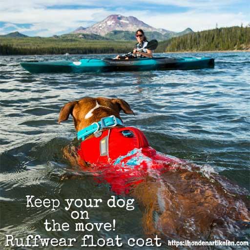 promotie vakantie met je hond